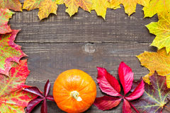 Autumn background with colored leaves and pumpkin on rustic wooden background royalty free stock images