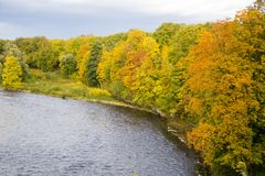 Autumn background with colored leaves of the tree and river in background. Sunny day royalty free stock photography