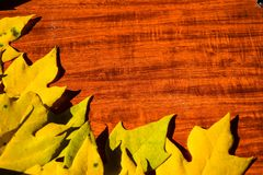 Autumn background with colored leaves on wooden board Royalty Free Stock Photo