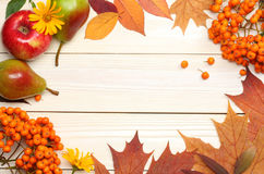 Autumn background with colored leaves on wooden board. top view Stock Image