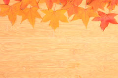 Autumn background with colored maple leaves on wooden board. Taken on 2014 royalty free stock image
