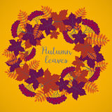 Autumn background, colorful floral frame with silhouettes of tree leaves on yellow background, design element for the fall season Royalty Free Stock Images