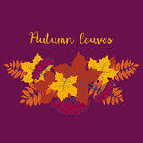 Autumn background, colorful floral frame with silhouettes of tree leaves on purple background, design element for the fall season Stock Image