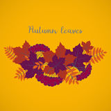 Autumn background, colorful floral frame with silhouettes of tree leaves on yellow background, design element for the fall season Stock Photo