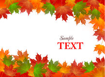 Autumn background with colorful leafs. Vector. Royalty Free Stock Images