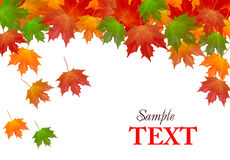 Autumn background with colorful leafs. Vector Stock Photos