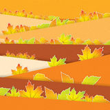 Autumn background with colorful. Leaves Royalty Free Stock Photo