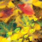 Autumn background with colorful leaves stock illustration