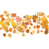 Autumn background with colorful leaves. Stock Images