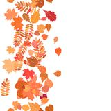 Autumn background with colorful leaves. Royalty Free Stock Photos