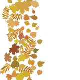 Autumn background with colorful leaves. Stock Photos