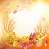 Autumn background with colorful leaves. EPS 10 Stock Photos