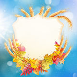 Autumn background with colorful leaves. EPS 10 Stock Image