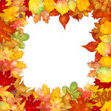 Autumn background with colorful leaves frame Royalty Free Stock Image
