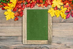 Autumn background with colorful leaves and green chalkboard Stock Photography