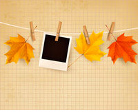 Autumn background with colorful leaves on rope. Royalty Free Stock Photography