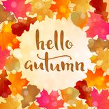 Autumn background with colorful leaves and text. Autumn sunny background with colorful leaves and hello autumn quote Vector Illustration