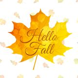 Autumn background with colorful leaves and text. Autumn vector background with colorful leaves and `Hello Fall` quote Vector Illustration