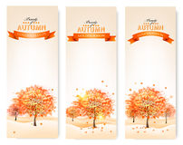 Autumn background with colorful leaves and trees.Vector illustra Stock Photography