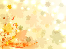 Autumn background with colorful maple leaves and floral ornament Stock Images