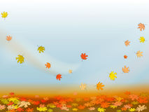 Autumn background with colorful maple leaves Stock Photography