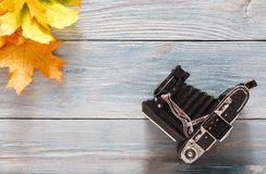 Autumn season background, vibrant maple leaves. Autumn background. Colorful maple leaves and vintage camera on gray rustic wood background with copy space Royalty Free Stock Photos