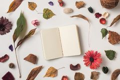 Autumn background with small notebook Royalty Free Stock Photos