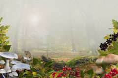 Autumn background with copy-space Royalty Free Stock Image
