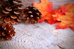 Autumn Background with Copy Space Stock Photography