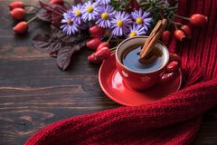 Autumn background with cup of tea. Flowers and warm scarf on the wooden background. Autumn still life, spending autumn time at cozy home royalty free stock image