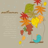 Autumn background with cute blue bird under rain Royalty Free Stock Photography