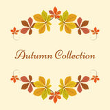Autumn background, decor frame with yellow leaves Royalty Free Stock Photos