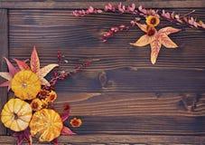 Autumn Background delle foglie, delle bacche, dei fiori e delle zucche Fotografie Stock Libere da Diritti
