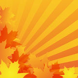 Autumn background design. Abstract autumn background design with maple leaves Stock Photo