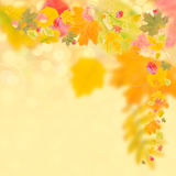Autumn background for design. Autumn background with bright leaves for design, school season; selective focus Stock Photos