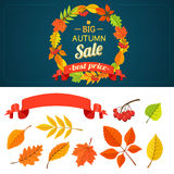 Autumn background and design elements Stock Photography