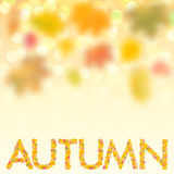 Autumn background for design VII. Autumn background with bright leaves for design, school season; selective focus Stock Image