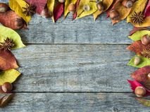 Autumn background with dry leaves, nuts, acorns cinnamon spices on wooden table. Copy space Royalty Free Stock Photos