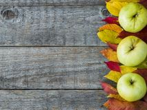 Autumn background with dry leaves, nuts, acorns cinnamon spices on wooden table. Copy space Royalty Free Stock Photo