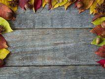 Autumn background with dry leaves, nuts, acorns cinnamon spices on wooden table. Copy space Stock Image