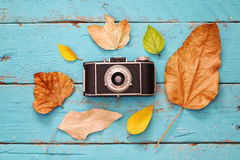 Autumn background with dry leaves and old camera Stock Image