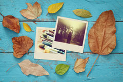 Autumn background with dry leaves and old photo frames Royalty Free Stock Photo