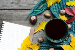 Autumn background with dry leaves, scarf, cup of coffee and blank notebook Royalty Free Stock Images