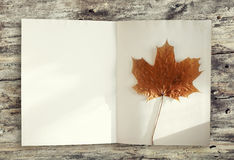 Autumn background, empty page of book and yellow maple leaf Stock Images