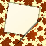 Autumn background with an empty paper. Eps 10 Royalty Free Stock Image