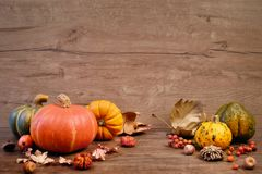 Autumn background with Fall dry decorations on wood. Side view, toned image, focus on the decorations. Space for your text Royalty Free Stock Image