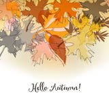 Autumn background Stock Photos
