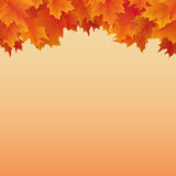 Autumn background with fall leaves on sky Stock Photography