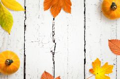 Autumn background of fall leaves on the wooden board, top view.  royalty free stock photos