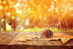 Autumn background of fallen leaves over wooden table and forest backgrond with lens flare and sunset Stock Photo